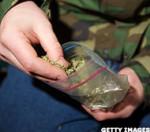 Marijuana Legalization Presents Predicament for Employees